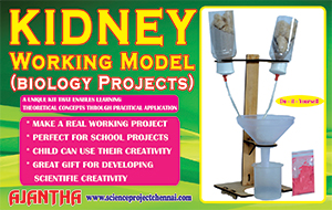 KIDNEY-WORKING-MODEL